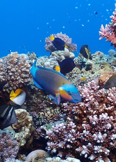 egypt-1473997_640.jpg