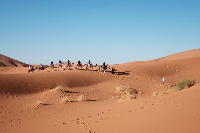 Kameltour durch die Wüste Ägyptens.jpg
